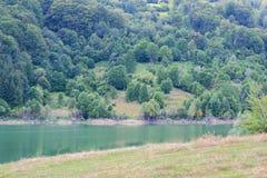 Doftana河的湖Paltinul在普拉霍瓦县,罗马尼亚 库存照片