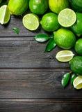 Doftande grön limefrukt fotografering för bildbyråer