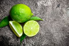 Doftande saftig limefrukt royaltyfri foto