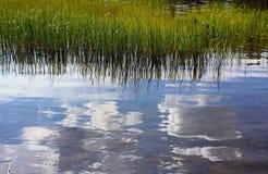 Dog湖风景,图奥勒米草甸,优胜美地 库存照片