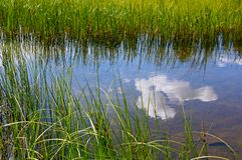 Dog湖风景,图奥勒米草甸,优胜美地 免版税库存图片