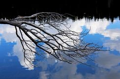 Dog湖,图奥勒米草甸,优胜美地 免版税库存图片