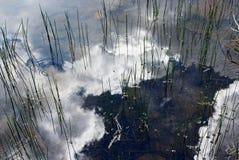 Dog湖,图奥勒米草甸,优胜美地 库存图片