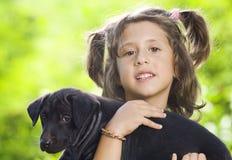 dog Стоковое Изображение
