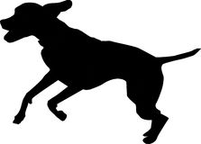 Dog. A  of the silhouette of a dog Royalty Free Stock Images