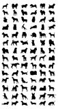 Dog. Black silhouettes of different breeds of dog. A illustration royalty free illustration