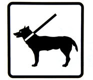 Dog. Signs of dog sign on a leash Royalty Free Stock Images