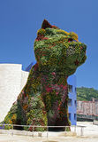 Dog. A huge dog made of flowers Stock Image