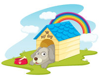 Dog. In his kennel illustration Royalty Free Stock Image