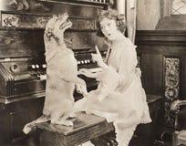 Dog accompanying woman on piano Royalty Free Stock Photos