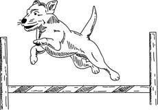 Dog agility vector illustration
