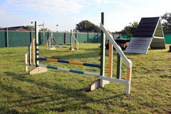 Dog agility course landscape Stock Photo