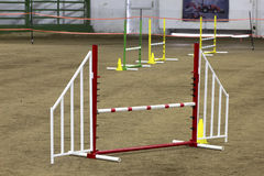 Dog Agility Equipment in Arena Stock Image