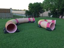 Dog agility Tunnels royalty free stock photography