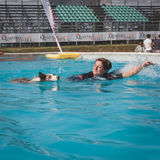 Dog amd trainer enjoy the swimming pool at Quattrozampeinfiera in Milan, Italy Stock Photos