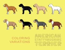 Dog American Stafforshire Terrier Coloring Variations Vector Illustration Royalty Free Stock Photo
