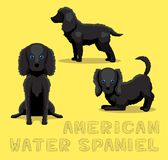 Dog American Water Spaniel Cartoon Vector Illustration Stock Image