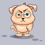 Dog is angry Stock Image