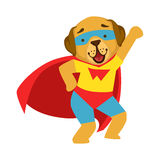 Dog Animal Dressed As Superhero With A Cape Comic Masked Vigilante Character. Part Of Fauna With Super Powers Flat Cartoon Vector Collection Of Illustrations Stock Photos