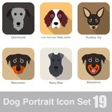 Dog, animal face character icon design set Royalty Free Stock Photography