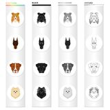 Dog, animal, home and other web icon in cartoon style.Doberman, boxer, pomeranian icons in set collection.
