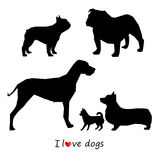 Dog animal puppy pet vector black Stock Photography
