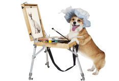 Dog artist draws a cat Stock Photo