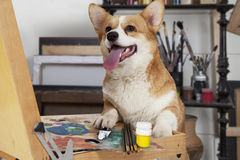 Dog in an artistic workshop Stock Photography