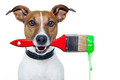 Dog as a painter. With a brush and color Royalty Free Stock Photo