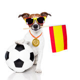 Dog as soccer with spanish flag Royalty Free Stock Photos
