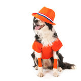 Dog as soccer supporter Royalty Free Stock Photo