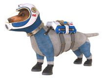 Dog in an astronaut`s space suit. 3D illustration isolated on white. 3D illustration. Dog in an astronaut`s space suit, isolated on white Stock Photography