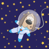 Dog astronaut Stock Image