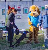 Dog Attacking Mascot the Annual Roanoke Valley SPCA 5K Tail Chaser. Roanoke, VA – March 23rd: Dog attacking mascot at the Annual Roanoke Valley SPCA 5K royalty free stock images