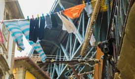 A Dog on a Balcony Next to Hanging Laundry Stock Images