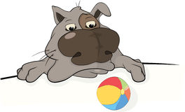 Dog and a ball. Cartoon Royalty Free Stock Photo