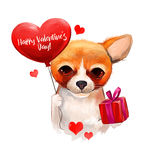 Dog with balloon in heart shape and gift box. Cute pet wishes you happy valentines day. Digital art illustration. Cute Stock Images