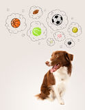 Dog with balls in thought bubbles Royalty Free Stock Photo