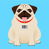 Dog with bar code tag Royalty Free Stock Photo