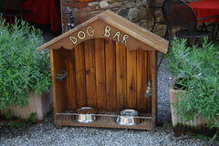 Dog bar Stock Image