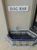 Dog Bar Stock Photo
