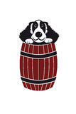 Dog in barrel Stock Photography