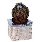 Dog in a basket. Vector illustration.