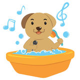 Dog bath cartoon Royalty Free Stock Photos