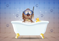 Dog in bath with diving mask Stock Photography