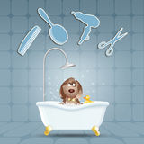 Dog in bath for grooming Stock Images