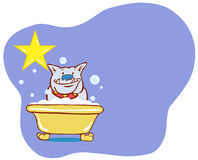 Dog Bath Star - Bulldog Stock Image