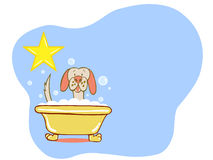 Dog Bath Star - Labrador. A canine is enjoying a bubble bath like a superstar