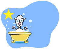 Dog Bath Star - Poodle Royalty Free Stock Photography