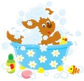 Dog bathing stock illustration